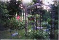 Iron garden gazebo surrounded by multi-colored hollyhocks.