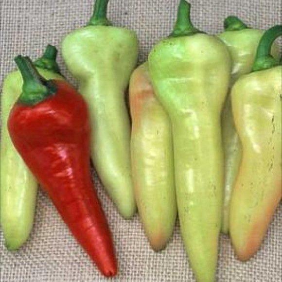 Pepper, Sweet - Sweet Banana | Friends School Plant Sale